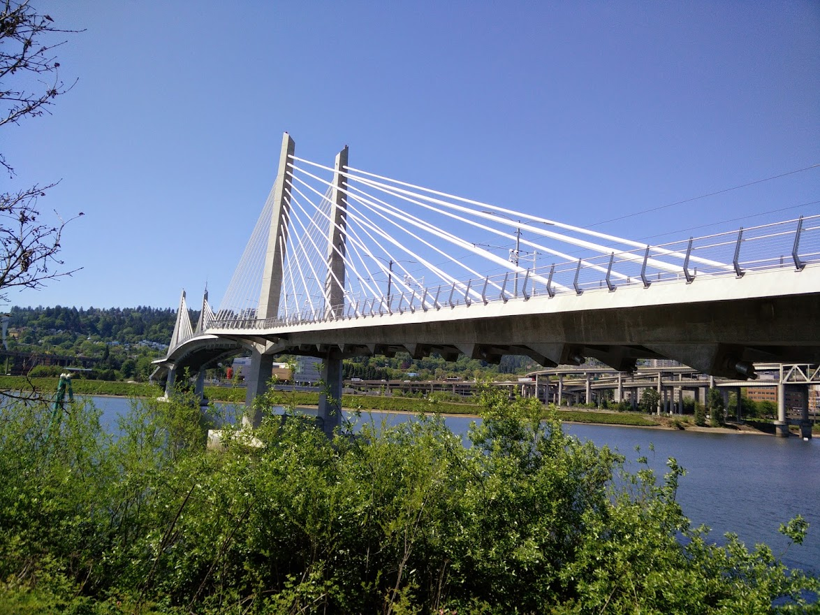 The Tilikum Crossing, a cable suspension bridge, seen from the east bank of the Willamette River in Portland, Oregon