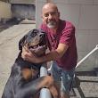 Gilberto S