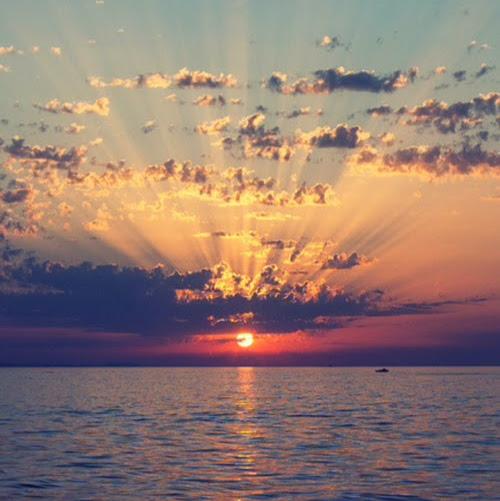 Sunrisecot