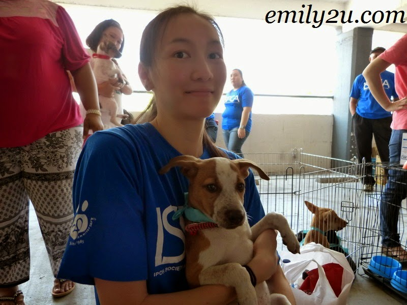 ISPCA pet adoption campaign Ipoh