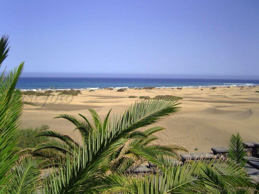 Дюны острова Гран Канария