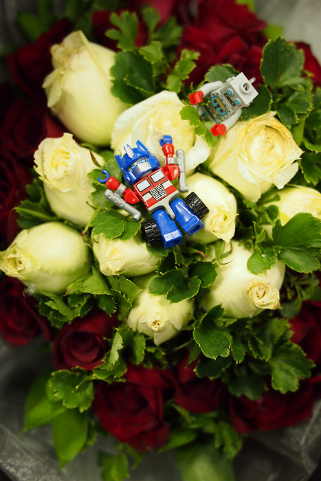 Kreon Optimus Prime and Lego Minifig Clockwork Robot frolick on roses