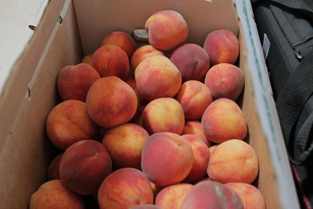 Half of the peaches from the Fruit Shack.