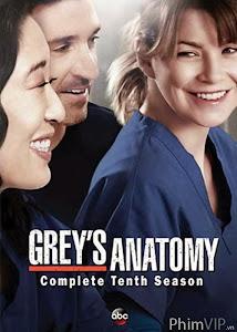 Ca Phẩu Thuật Của Grey 10 - Grey's Anatomy Season 10 poster