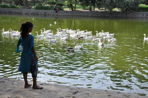 "Photo de la galerie ""Lodi Garden, poumon vert au coeur de Delhi"""