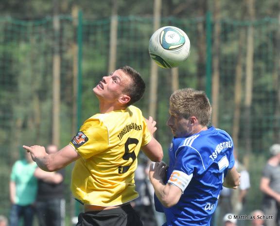 30. Spieltag: Torgelower SV Greif - TSG Neustrelitz - Seite 2 DSC_0023