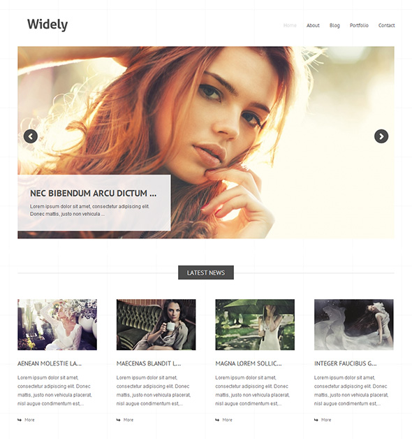 Widely Elegant WordPress Magazine Theme