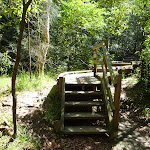 Timber Boardwalk at Brickmakers Creek (344053)