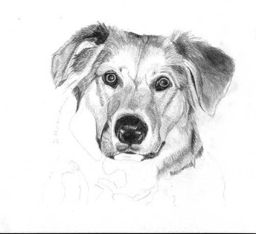pencil shaded drawings, ~ rocking51
