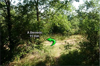 Camino de la Madera/Izq.