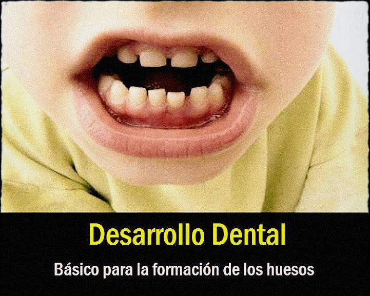 dientes-de-leche