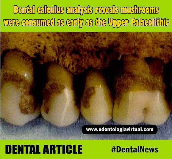 dental-news