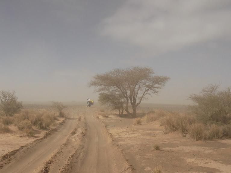 marrocos - Marrocos e Mauritãnia a Queimar Pneu e Gasolina - Página 10 DSCF1103