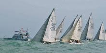 J/80 sailboats starting off Hong Kong, China