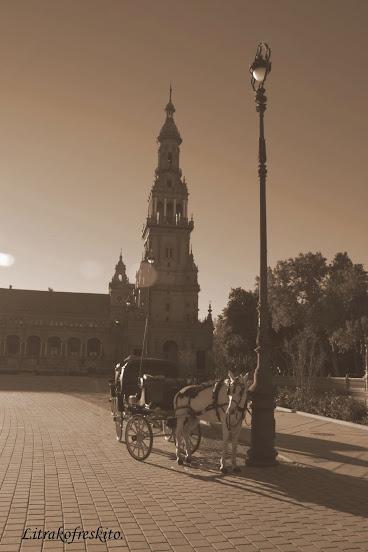 Hilo de fotos y charla fotografica. - Página 14 Plaza+de+Espa%25C3%25B1a+014