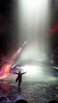 A scene from the show Le Reve, The Dream, playing at the Wynn Theater. It's a show that takes place on continuously changing stages, the water, and all the airspace to the top of the theater!