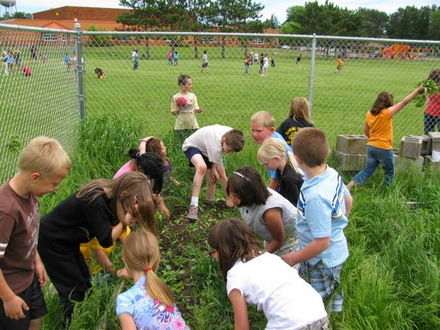 Master Gardener Volunteers work with students at a Hayward, WI, elementary school.