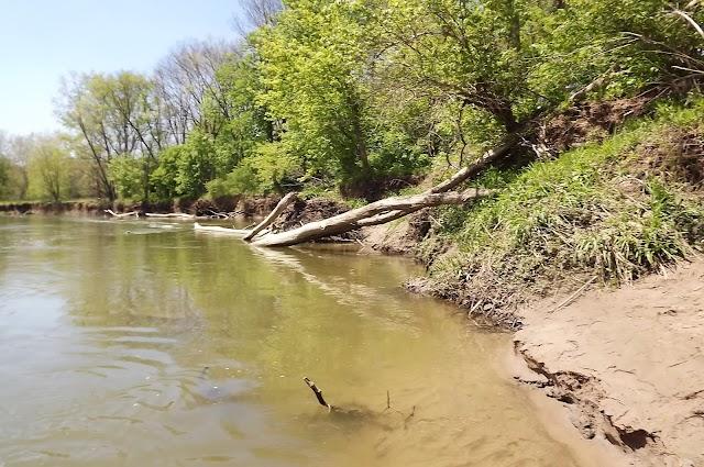 Wildcat Creek Park