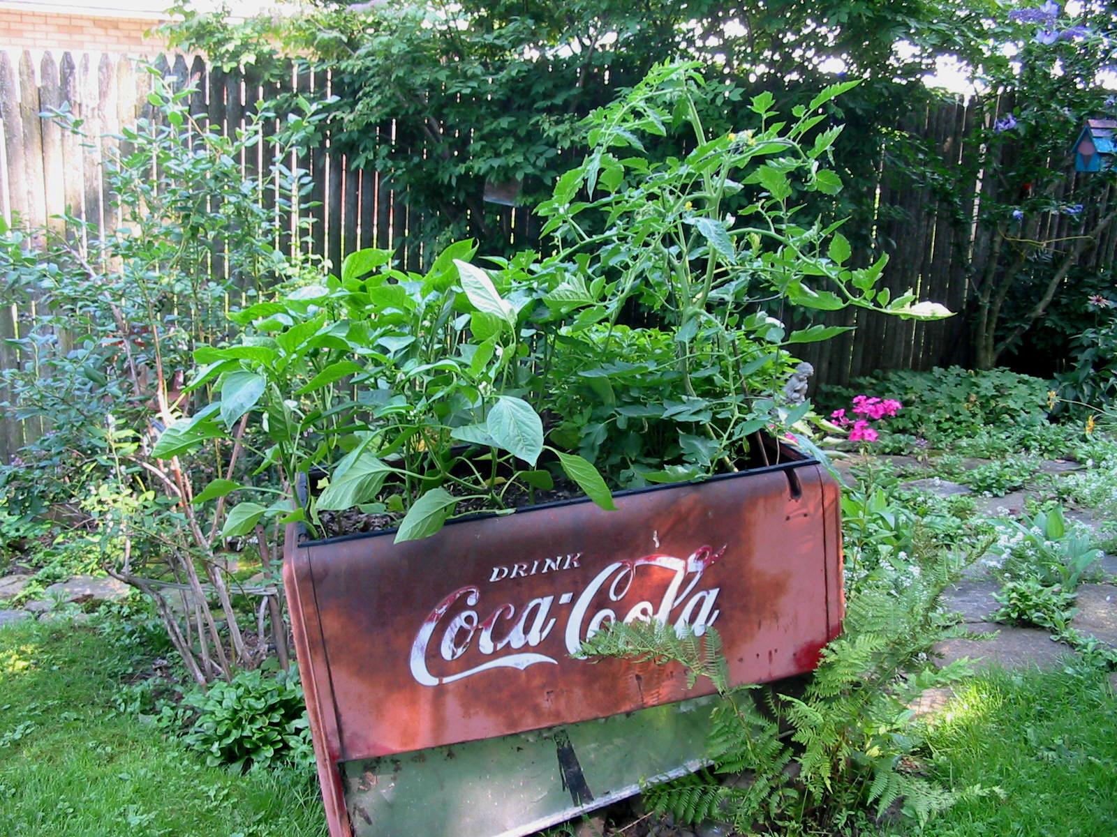 The Moonlight Gardener Recycled Garden Art Or Gaden Junk