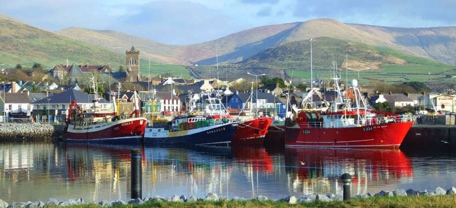 Dingle Harbour. From Driving Ireland's Wild Atlantic Way