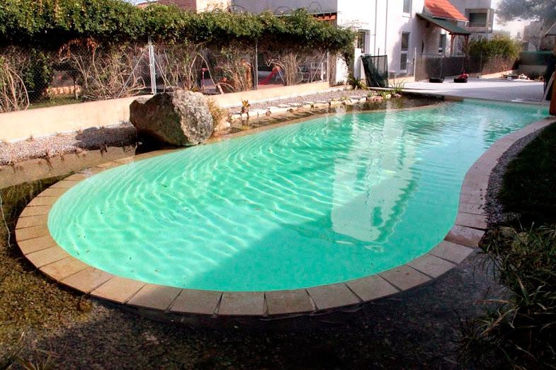Piscinas naturales dise o e instalaci n urbanarbolismo for Diseno y construccion de piscinas de hormigon
