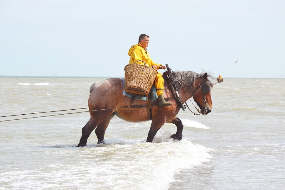 bezienswaardigheden-aan-de-vlaamse-kust