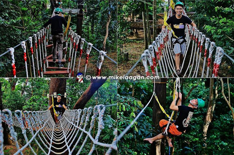 Aerial Adventure Walk