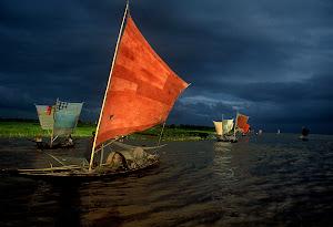 foto Shahidul Alam