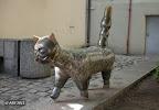 Senamiesčio katinas
