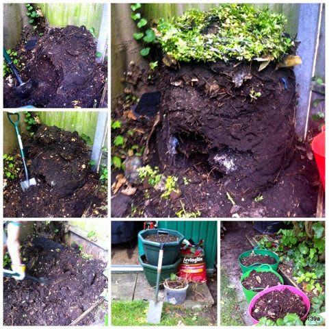 The moral of the compost bin story...