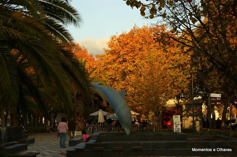 Outono em Setúbal