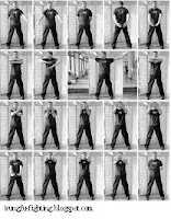 stances of sil lum tao form of wing chun.