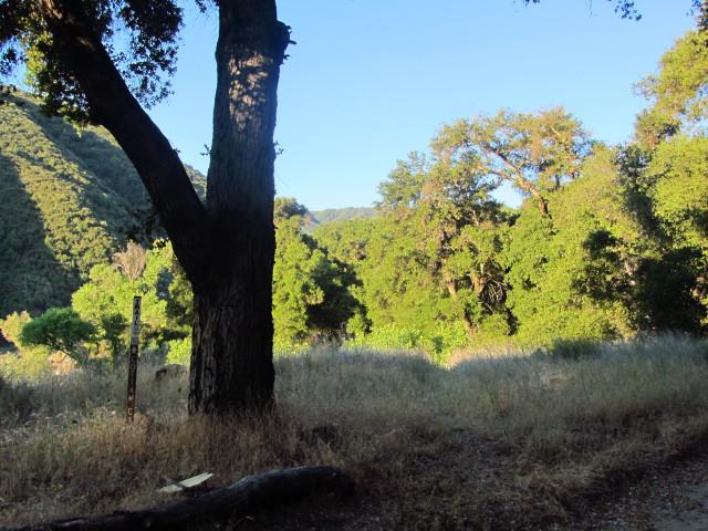 trailhead for Blue Canyon