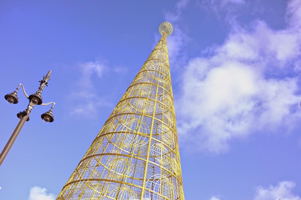Plaza del Sol, Arbol de Navidad