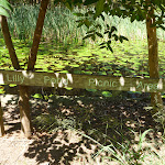 Sign at Lily Pond Picnic Area in Blackbutt Reserve (401152)