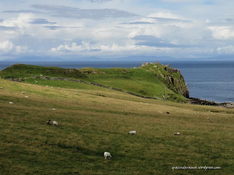 - Passeando até à Escócia! - Página 15 DSC04107