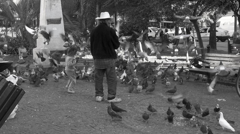 as migalhas, a menina, o senhor e as pombas.