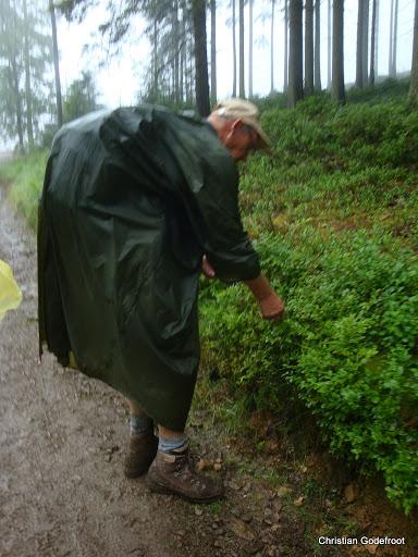 MESA, Ardennes belges, 1-4 x 30km, 26-29 juin 2012 DSC08935