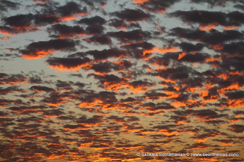 Vivid and Vibrant Evening Sky at Kaziranga - 9