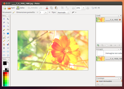 Pinta 1.4 su Ubuntu