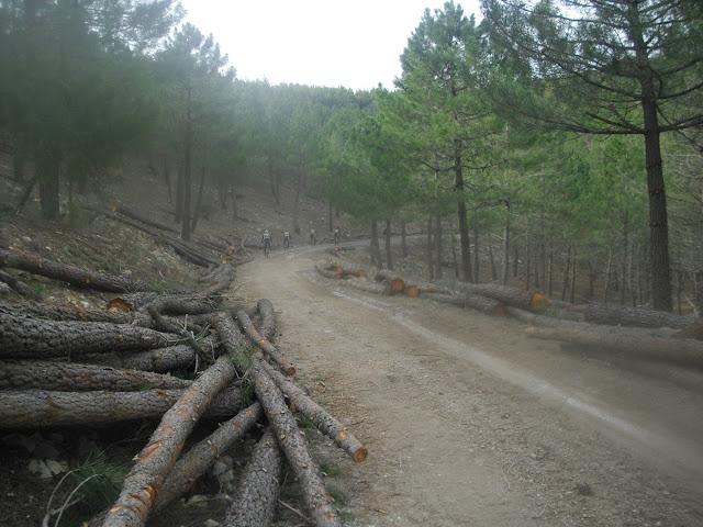 Ruta pantano del Quiebrajano para el sábado 16 de marzo. CIMG5320