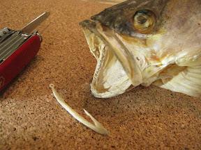 fishig%2520hook%2520037.jpg