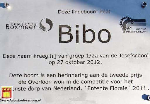burgemeester plant lindeboom in overloon 27-10-2012 (32).JPG