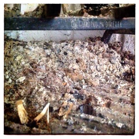 cenere di legna di castagno e quercia