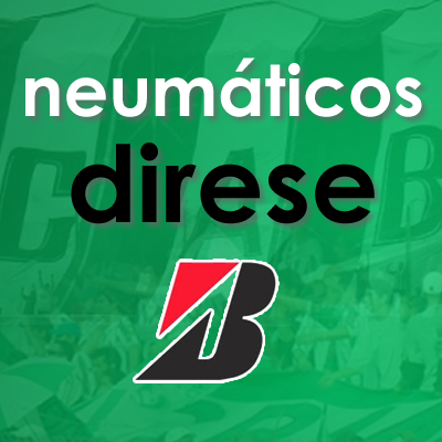 NEUMATICOS DIRESE