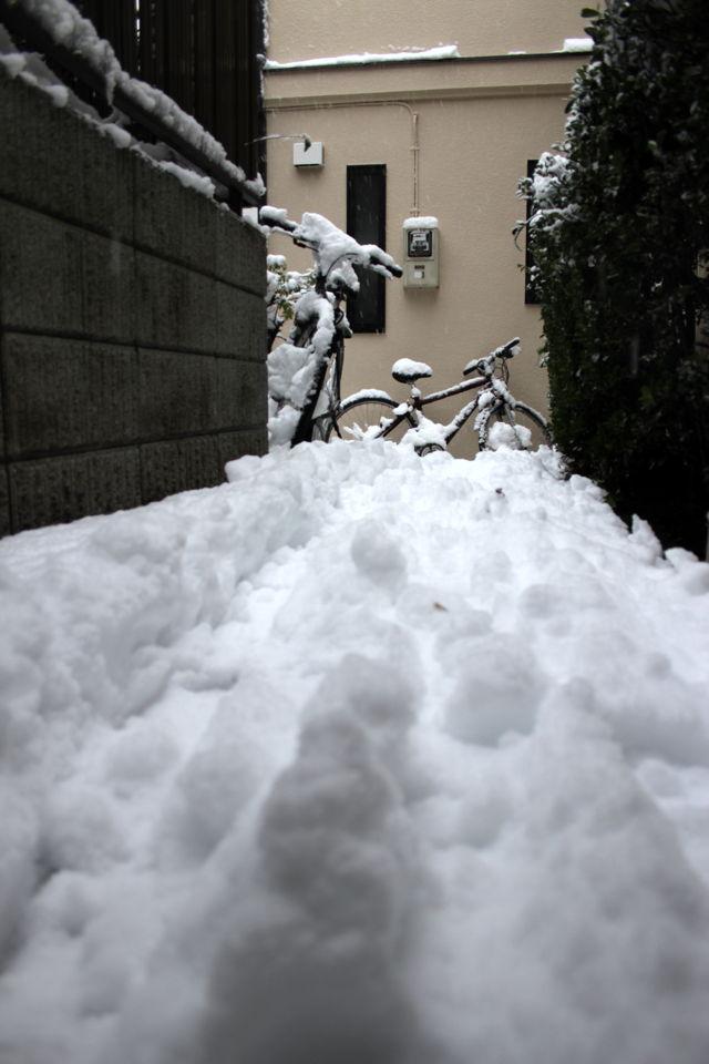 東京に雪すげえwww