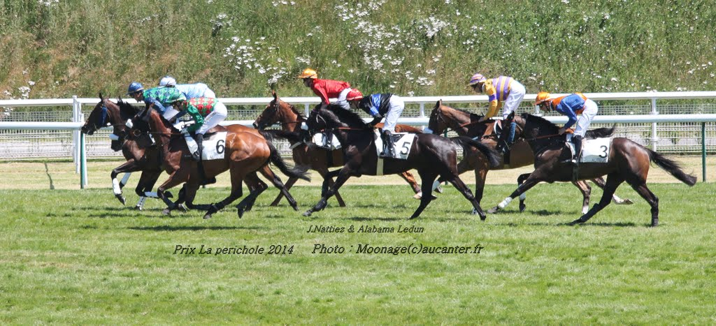 Photos Auteuil le 21-06-2014 IMG_2203