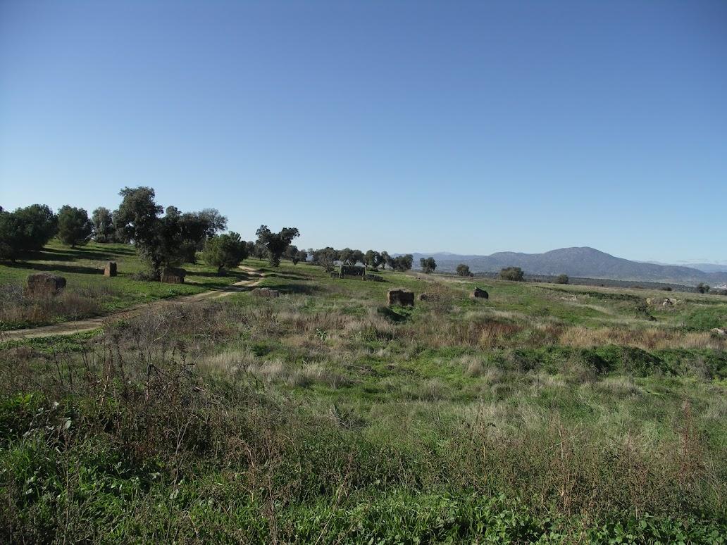 Partida 200. La Granja. 02-12-12. PICT0214