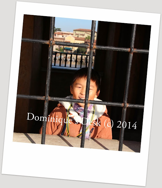 Monkey boy posing behind bars