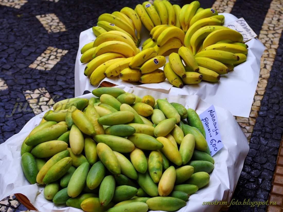 Цены на Мадейре, бананы и маракуйя банан